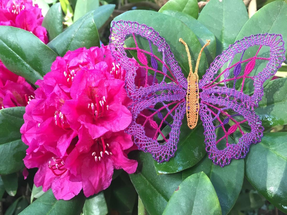 Schmetterling für DKV 2019 (c) Hilli